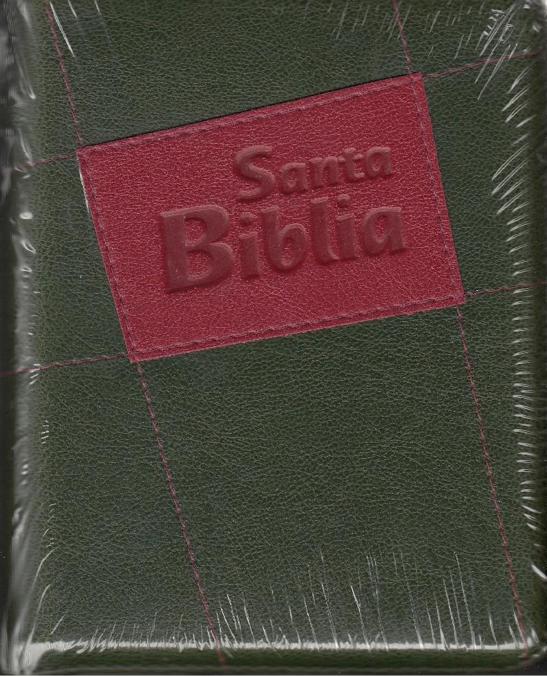 Biblia 45 plateado verde